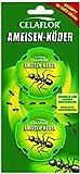 Celaflor Ameisen-Köder, Praktische Köderdose zur...