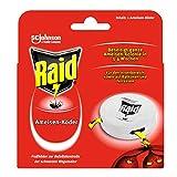 Raid (Paral) Ameisen Köder-Dose für den Innen- und...